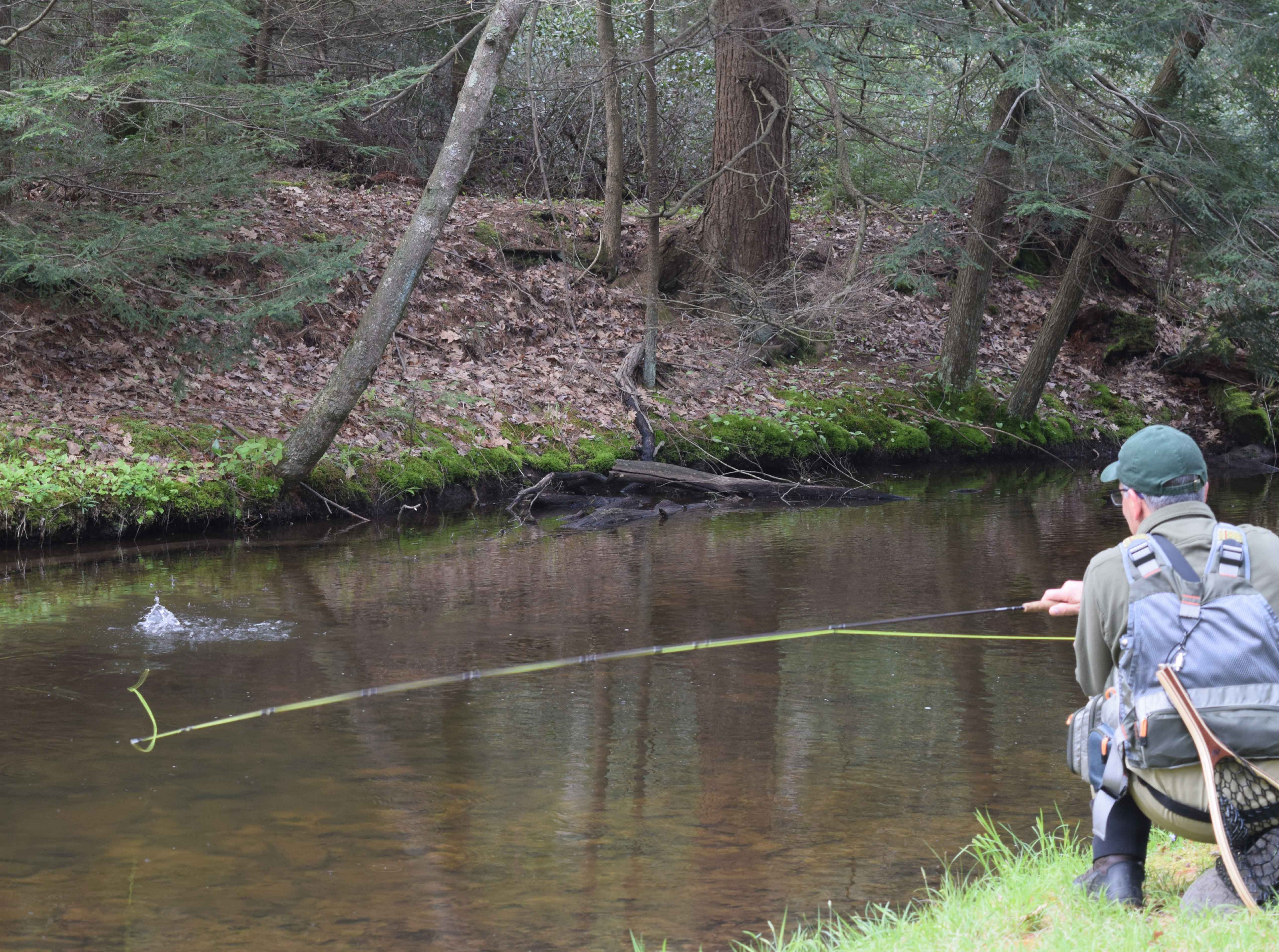 Fly Fishing Walk and Wade on Penns, Spring, Pine, Kettle, Little Juniata, Lehigh, Tulpehocken, Manatawny, Pohopoco and Lackawanna just to name a few of the stream we guide on in PA