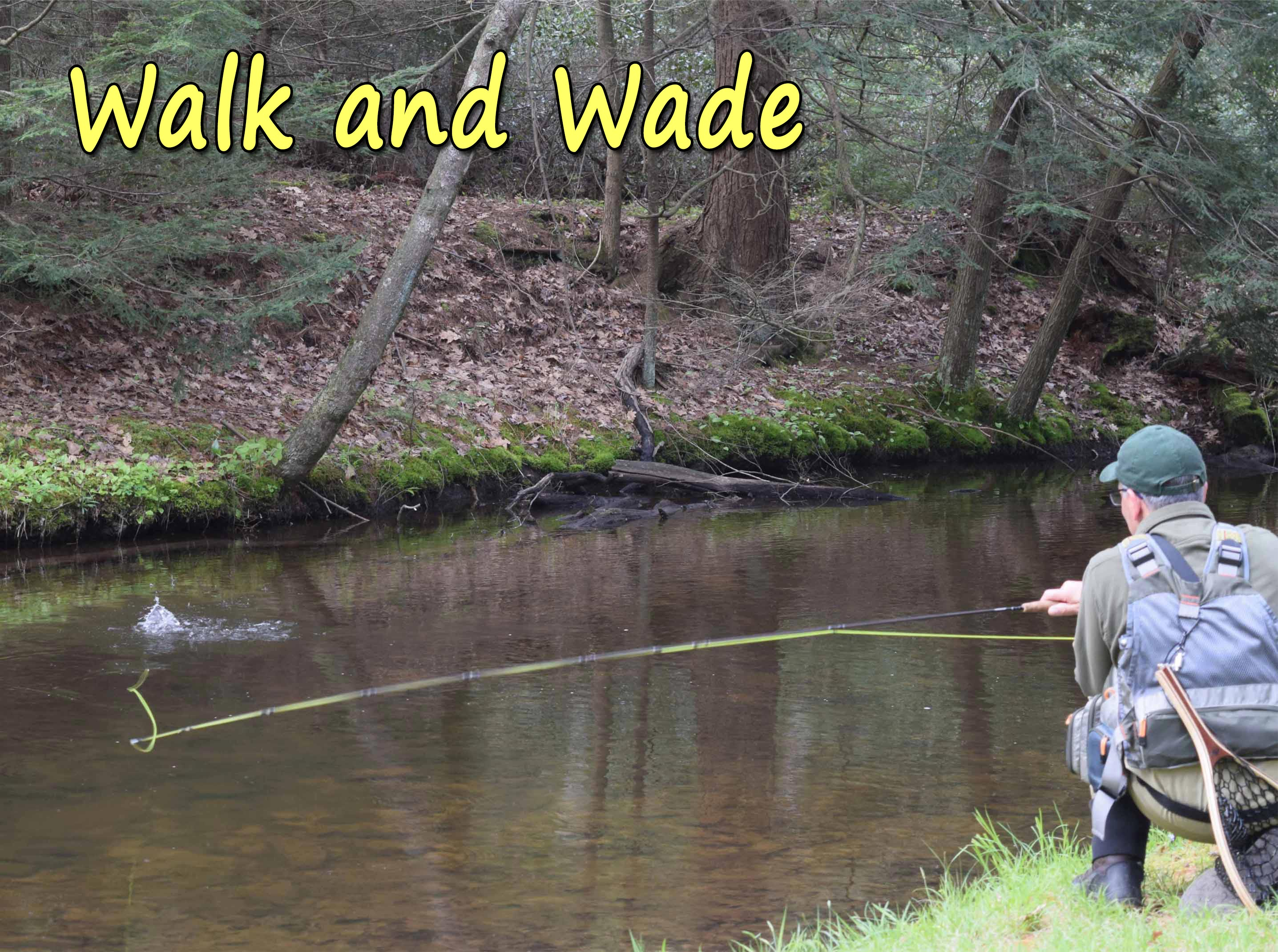 Walk and Wade Day Trips on Penns, Spring, Pine, Kettle, Little Juniata, Lehigh, Tulpehocken, Manatawny, Pohopoco and Lackawanna just to name a few of the stream we guide on in PA